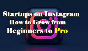 Startups on Instagram: How to grow from beginner to pro?